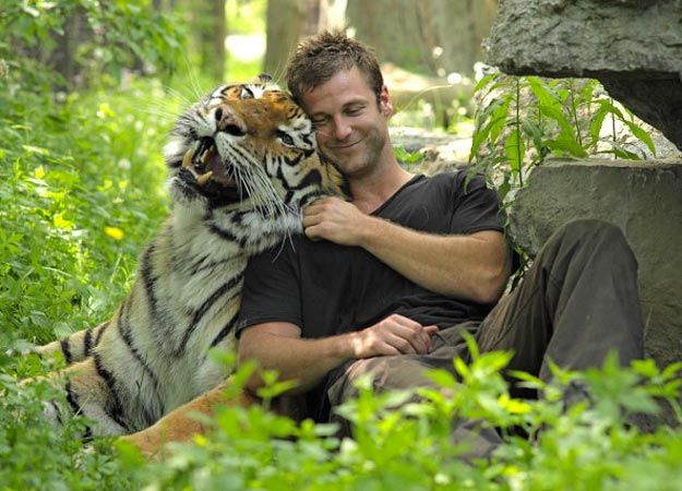 I want to be a Zoologist and work with tigers Zoologist With Tiger
