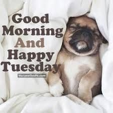 Image result for good morning happy tuesday