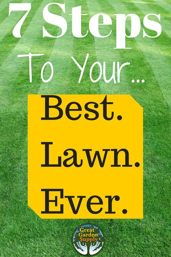 7 Lawn Care Tips Guaranteed To Help You Grow A Healthier