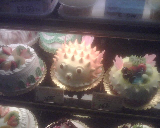 21 best images about puffer fish on pinterest animals for Fish tank cake designs