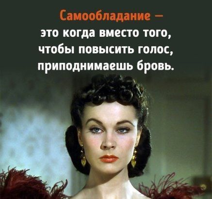 """(43) Одноклассники Поговорки, афоризмы и шутки - Всегда к месту, всегда вовремя <a href=""""https://www.natr-nn.ru/blog/category/entertainment"""">Еще больше постеров</a>"""
