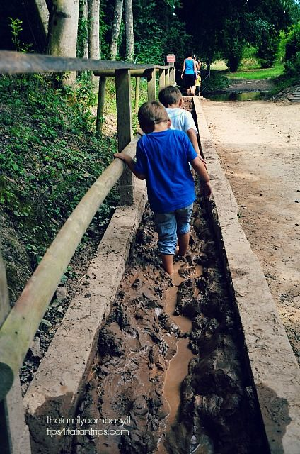 Un luogo magico. Dove si cammina nel fango, si resta sospesi tra gli alberi e si riscopre se stessi.