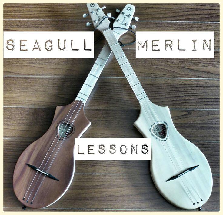 Seagull Merlin Lesson - Ob La Di