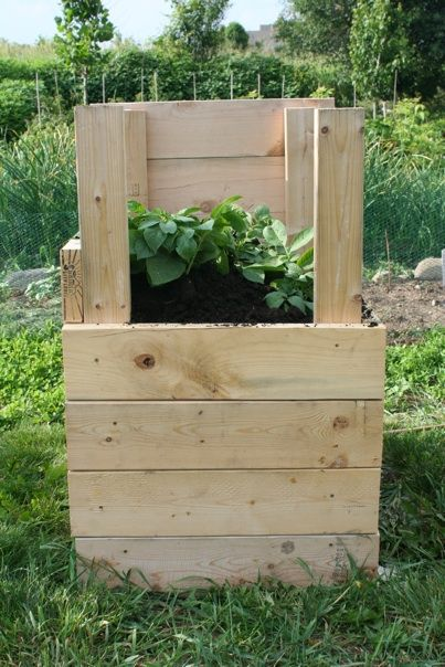 Coolest way to grow potatoes. We tried this and got about 50 lbs of potatoes from a 2x2 foot tower. :-)