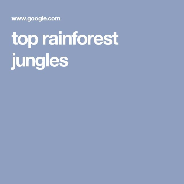 top rainforest jungles