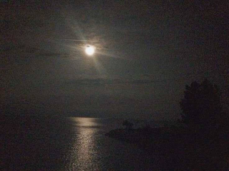 The windy night with moonlight on the lake. Perfection