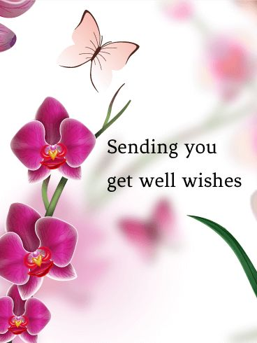 Get Well Wish Card: It is important to show someone how much you care. Sending a get well wishes card is one of the best ways to express your feelings. These cheerful butterflies and pretty flowers will always make someone feel better. Send this card if you want to tell someone you care about to get well.