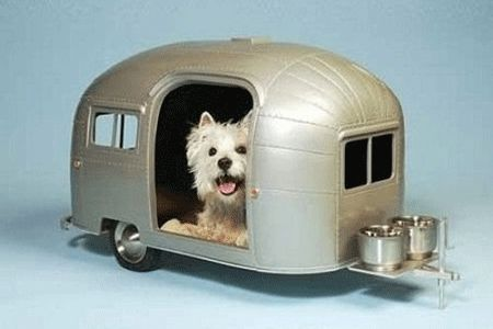 small dog beds | contemporary-dog-house-designs-small-pets-dogs