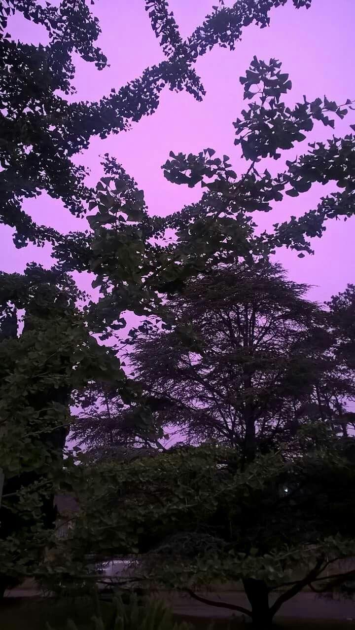 Cielo viola in Punta del Este Uruguay