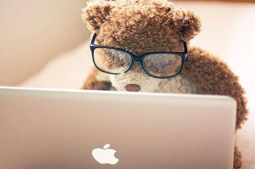 Pinterest teddy bear!