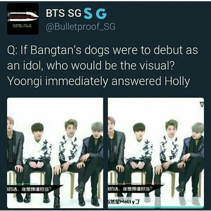Awwwww so cute!  I feel bad for the dog because Yoongi Oppa is in the hospital. But that means more time for Holly♡ Min Yoongi please get better!!