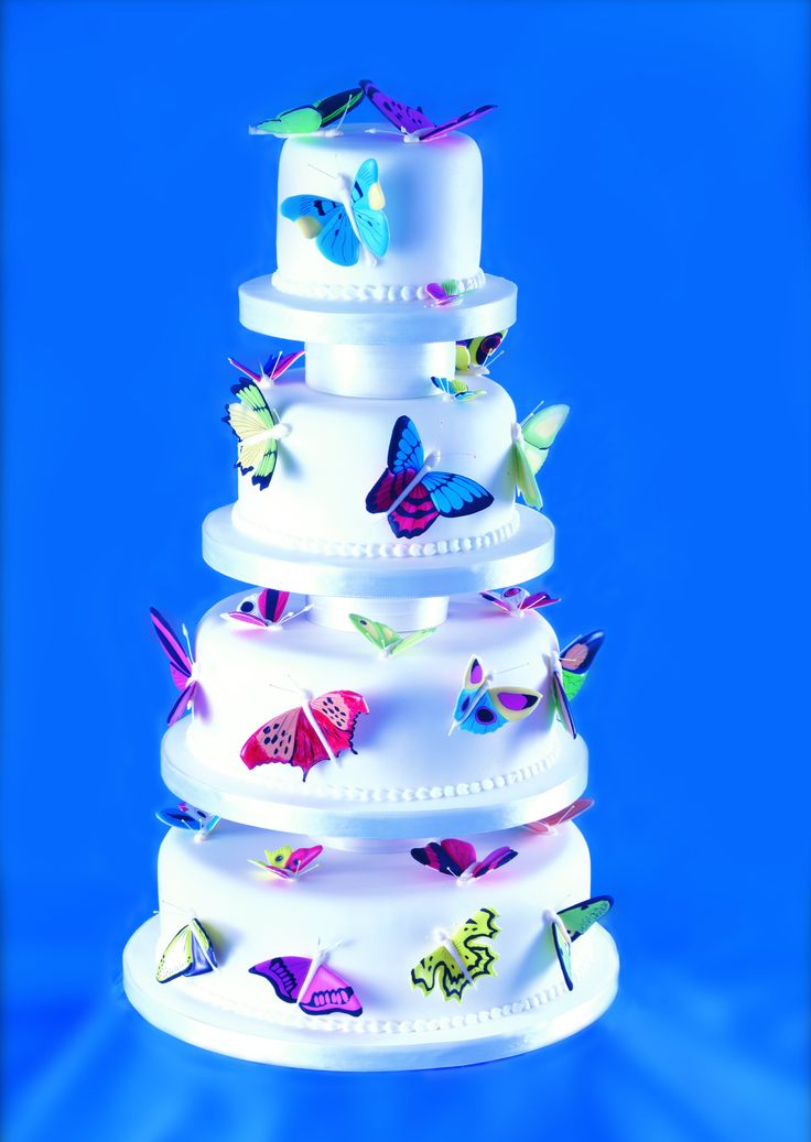 Butterfly cake by Mich Turner