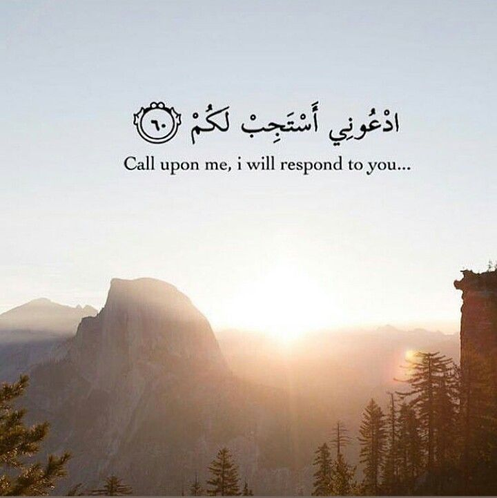 Islamic Quotes Alive Islamic Quotes Islamic Pictures Islam
