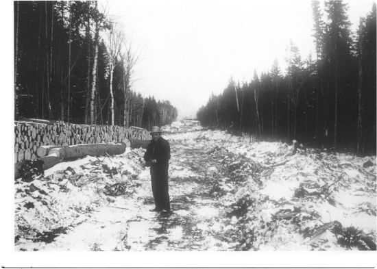 Historic-cutting the Golden Road