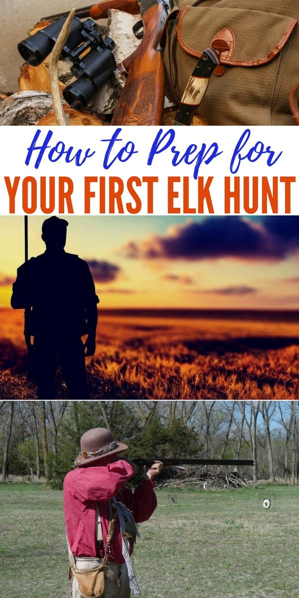 How to Prep for Your First Elk Hunt — Hunting elk is a trip of a lifetime for many. There's an art to hunting; finding that prized animal takes skill, patience and a little bit of luck. With the right preparation, you too can have a successful elk hunt.
