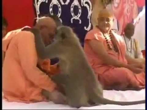 Hanumanji Visits Ram Katha - YouTube