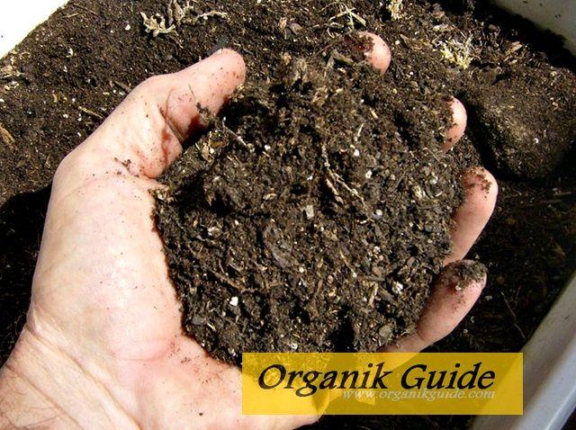 http://www.organikguide.com/2015/08/cara-membuat-pupuk-kompos-organik.html