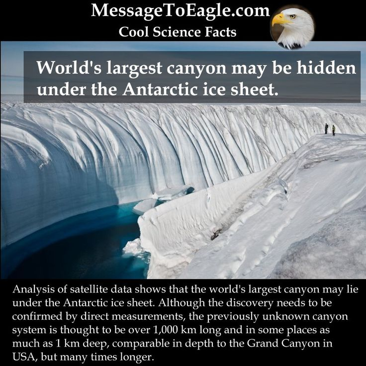 Science Hidden Facts: 3127 Best Images About Ice On Pinterest