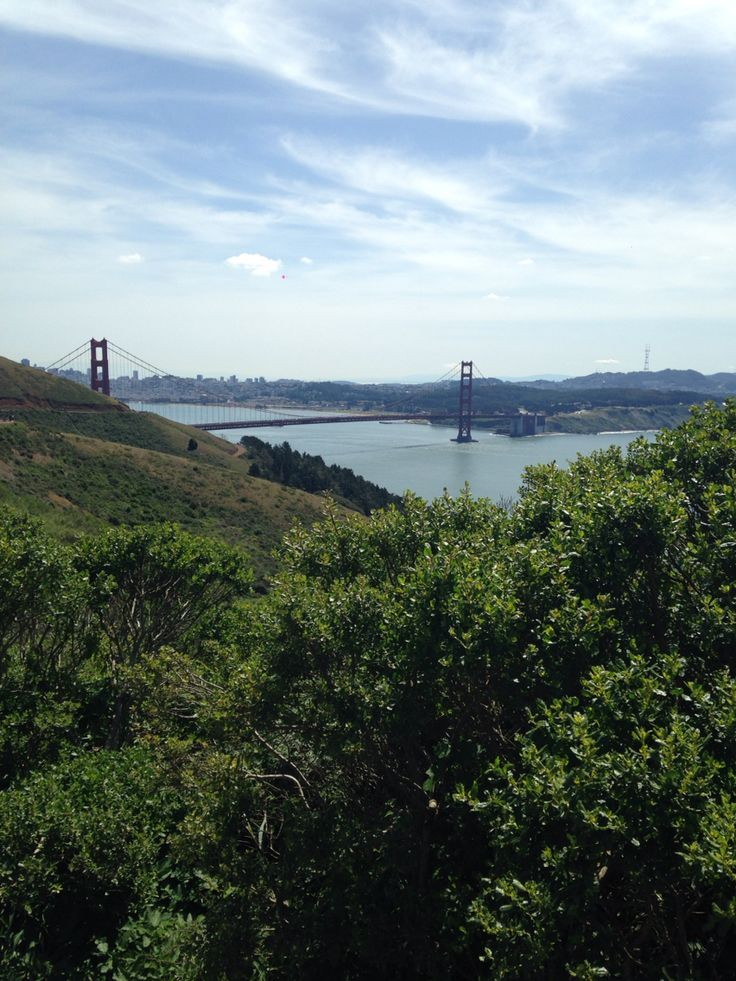 golden gate bridge, san fransisco skyline and harbour view from hawks hill.