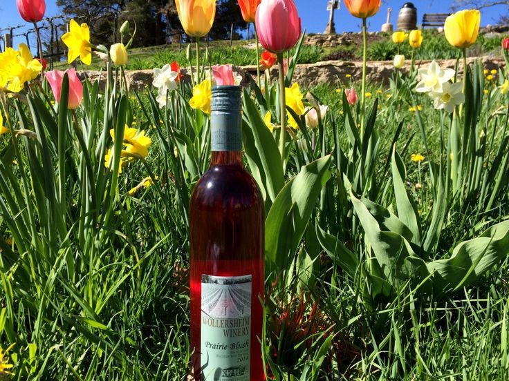 8 Wineries in Wisconsin You Need to Visit This Spring - The Bobber