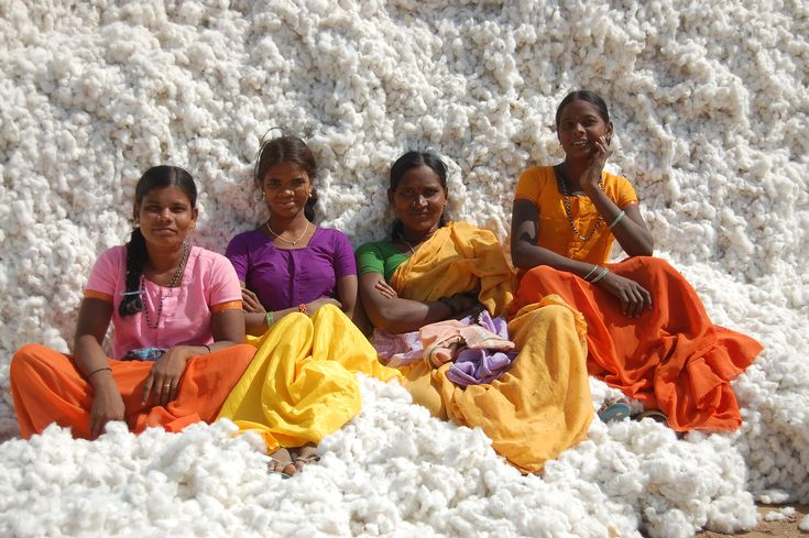 The 'Lady' cotton farmers of Gujarat