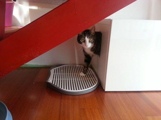 25 best ideas about cat litter mat on pinterest cat box for Scalette ikea