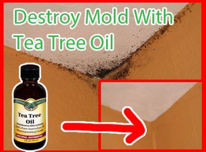 Schimmel in de BADKAMER en  .....Stinkende WASMACHINE.......Tea tree olie is zo'n natuurlijk milieuvriendelijk product dat schimmel kan verwijderen.   Meng 2 theelepels tea tree olie met twee kopjes water en voeg deze toe aan een spuitfles.
