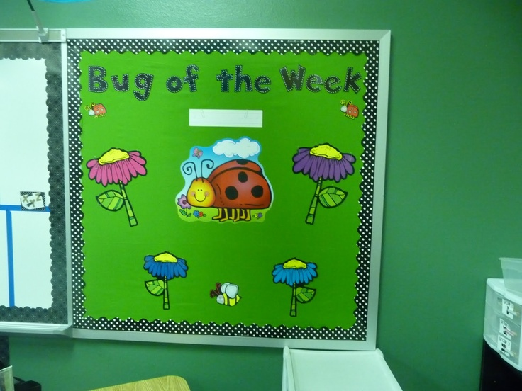 Ladybug Classroom Decoration Ideas : Ladybug theme with black and white polka dots and red colors