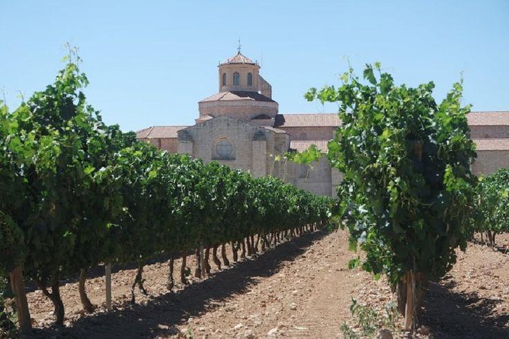 imagen 9 de Entre copas: Monasterio de Valbuena y los vinos de Matarromera.