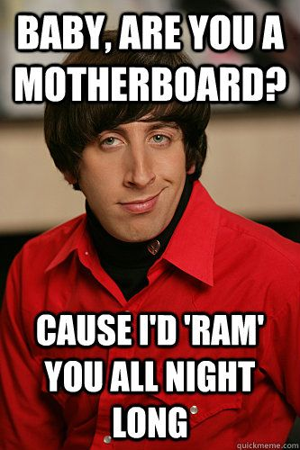 "Baby are you a motherboard? 'Cause I'd ""RAM"" you all night long. - Howard Wolowitz"