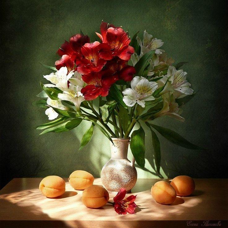 смотреть картинки цветы натюрморт поверхность впитывает