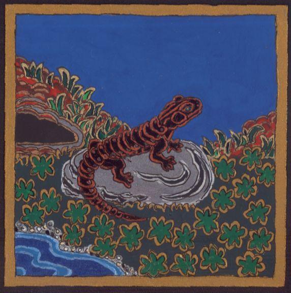 Alpesi szalamandra, 2011