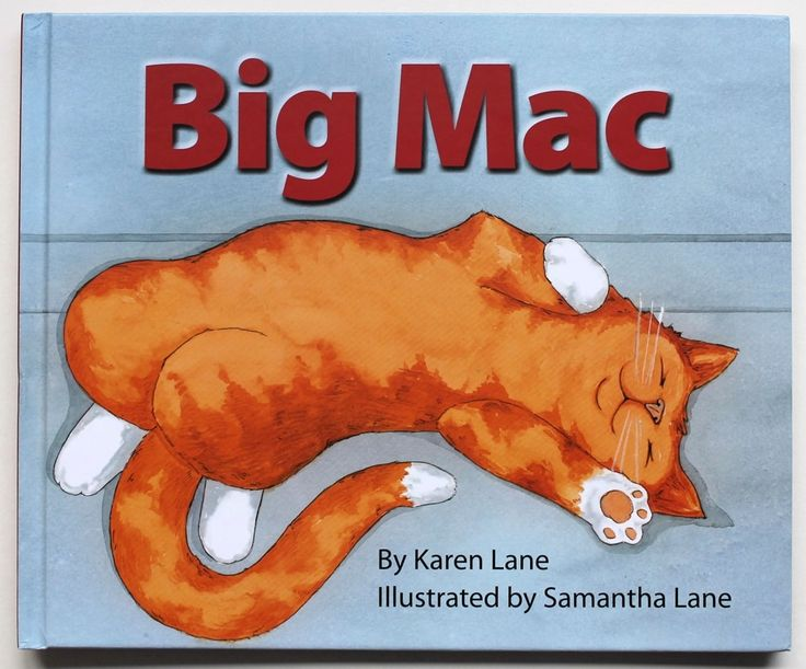 True story of a hungry, determined ginger cat rescued from MacDonalds. Pub: Duck Creek Press New Zealand. Avail www.fishpond.co.nz ISBN 978 1 877378 73 7