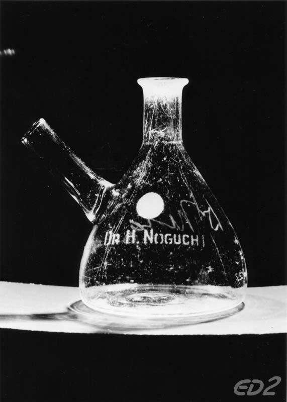 ロックフェラー医学研究所で使われていたDr.H.Noguchiの名前が入ったフラスコ