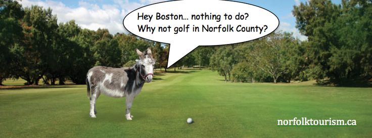 Boston Bruins are welcome to golf in Norfolk County now that they have some time on their hands! Go Habs Go! Montreal Canadiens to win NHL Stanley Cup! http://www.norfolktourism.ca