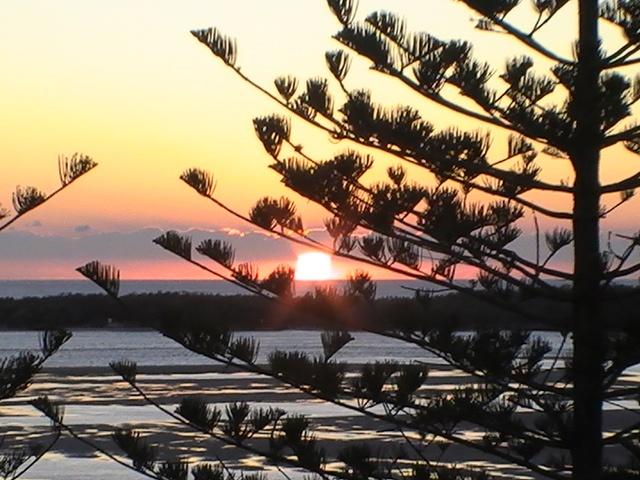 Pandanus beach wynnum.... Wherec creative hearts live!