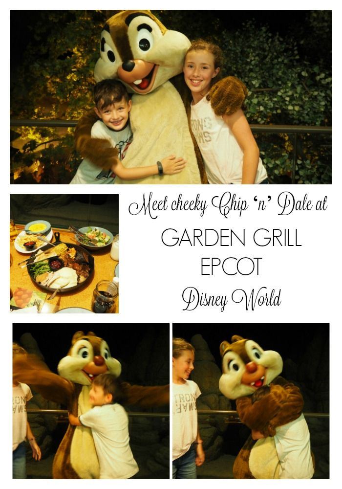 Meet Cheeky Chip N Dale At Garden Grill Epcot Character Meal