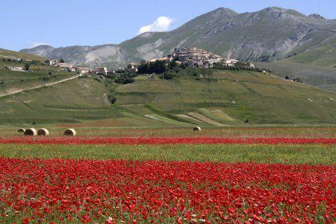 Umbria(Italy): Castelluccio di Norcia by chiar@s., via Flickr