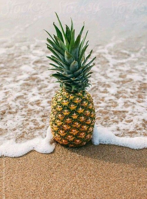 Pineapple is also a great source of proteolytic enzyme and bromelain, found in the stem, which helps the human digestive system break down the protein. Description from thehealthtips.com. I searched for this on bing.com/images