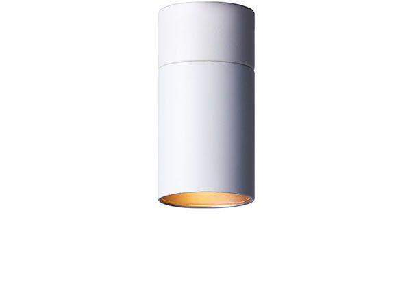 Parlor Down Light S フライミーパーラー ダウンライト S 100256