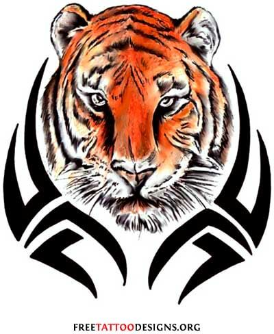 best 20 tiger tattoo design ideas on pinterest tiger tattoo tiger face tattoo and tiger tatto. Black Bedroom Furniture Sets. Home Design Ideas