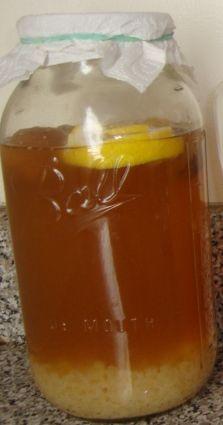 propiedades kefir de agua, como prepararlo y conseguirlo