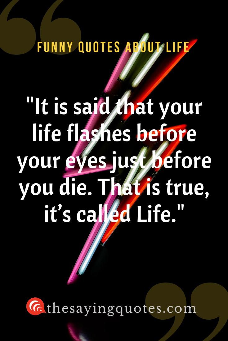 800 Funny Quotes About Life Love And Friend The Saying Quotes Funny Quotes Funny Quotes About Life Life Quotes