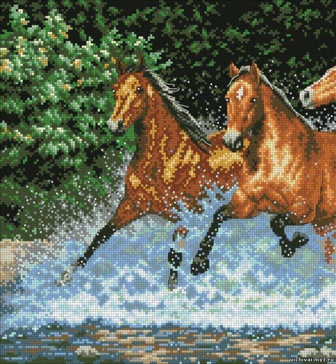 Gallery.ru / Фото #36 - лошади - zhivushaya