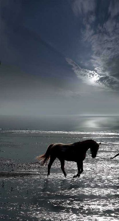By the light of the silvery moon....