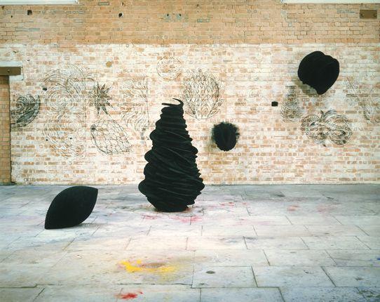 anish kapoor: Art Kapoor A, Art Sculpture, Kapoor Sculpture, Sculpture Installations, Anish Kapoor, Curves, Anish Kappor, Kapoor I V, Art Kapoor Hanson
