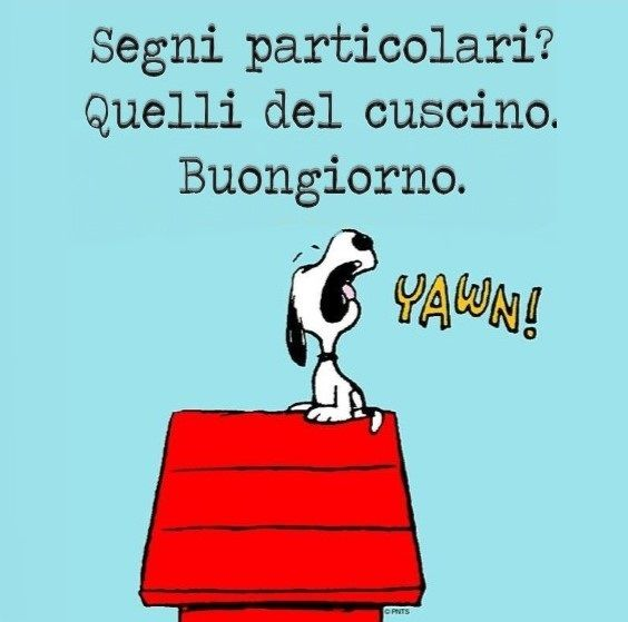 212 best images about buongiorno on pinterest snoopy for Snoopy immagini buongiorno