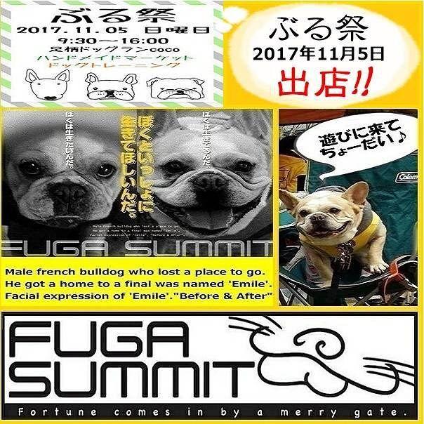 . . 〜ご出店者様ご紹介〜 . FUGA SUMMIT 様 . 今回、主催のしおさんよりお誘い頂き、 FUGA SUMMIT 出店させて頂きますー!! 当日は、犬グッズのフリマ等々~🙌✨ ぶる祭に参加される方、寄付出来る犬グッズあるよ❗っとゆー方、当日、持参頂きご協力賜れます様、宜しくお願い申し上げます。 ⚠ご寄付頂く犬グッズのご注意点 ○食品、オヤツ類、壊れている物、穴あきの物等はお控え下さい。 ○洋服等は洗濯済みの物をお願い致します。 ※今回は、車の積載の関係上、ケージ、クレート等サイズが大きな物はお控え下さい。  皆様のご協力賜れますよー宜しくお願い申し上げます。  FUGA SUMMIT @emile_san ↑以上です。宜しくお願い致します~🙇 . #ぶる祭#ぶる祭行くよ#ぶる祭り#フレンチブルドッグ#フレブル#ブル#BUHI#fbl#パピー#仔犬#犬#愛犬#フレンチブルドッグライフ#ボストンテリア#パグ#鼻ぺちゃ#ブルテリア#ミニチュアブルテリア#ドッグトレーニング#ドッグラン#ハンドメイド#オフ会#犬ばか部#いぬすたぐらむ#犬好き#多頭飼い