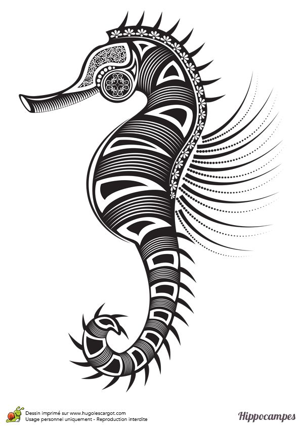 Dessin à Colorier D Un Hippocampe De Tatouage Hugolescargot Com