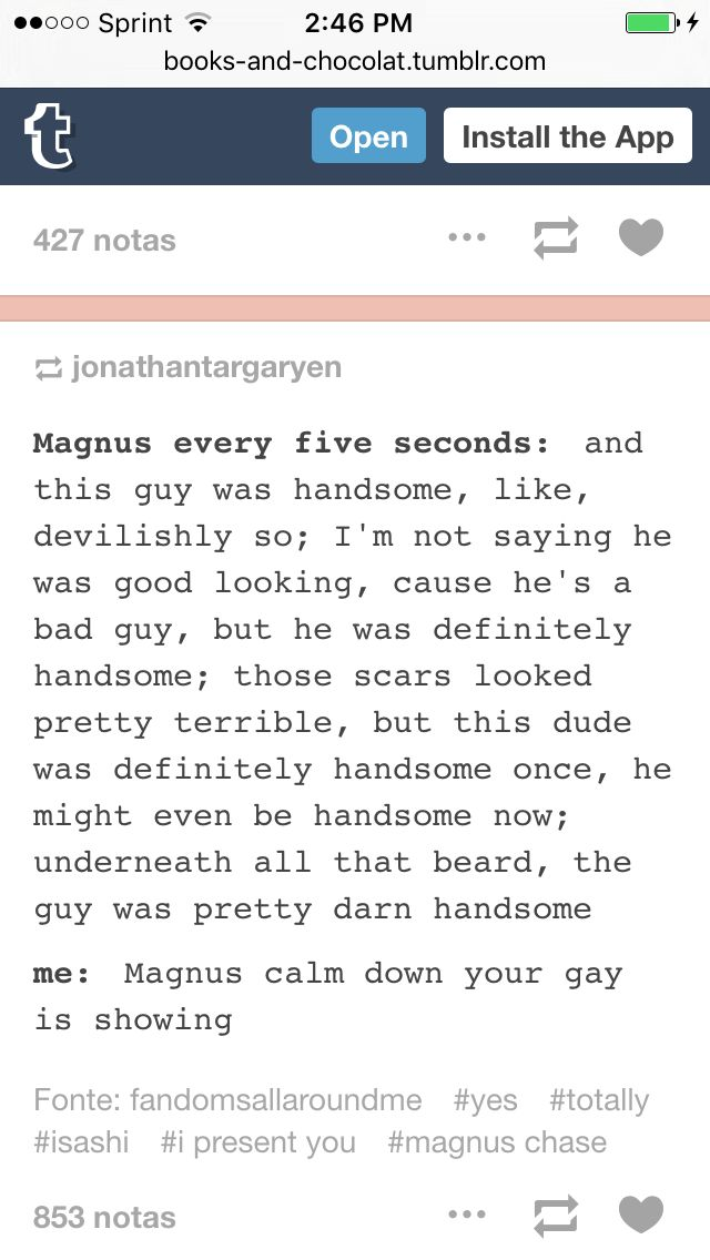 MAGNUS IS SO NOT STRAIGHT I DON'T KNOW WHAT HE IS BUT HE DEF ISN'T STRAIGHT PROBS PAN